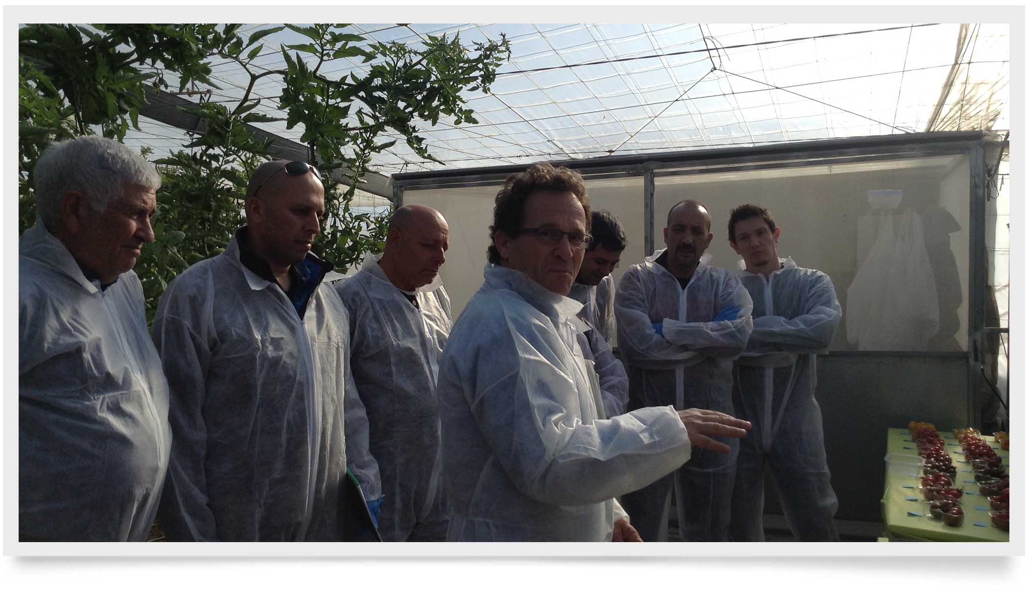team in greenhouse